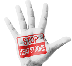 Stop_heat_stroke_health_tips