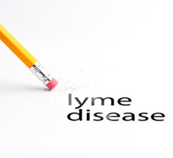 Lyme_disease_treatment