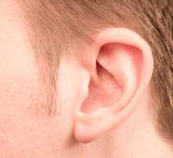 Image_of_ear