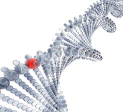 Als_gene_mutation_concept