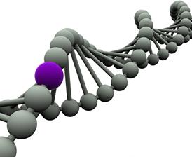 Diabetes type 2 gene concept